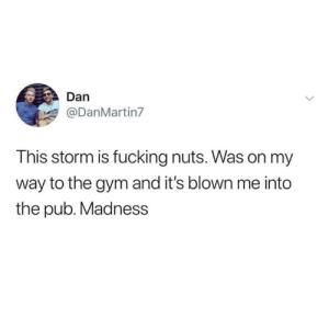 Crazy, Fucking, and Gym: Dan  @DanMartin7  This storm is fucking nuts. Was on my  way to the gym and it's blown me into  the pub. Madness It was a crazy storm..