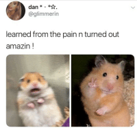 Energy, Memes, and Amazin: dan *.  @glimmerin  learned from the pain n turned out  amazin! I hope everyone carry the second hamsters energy into 2019