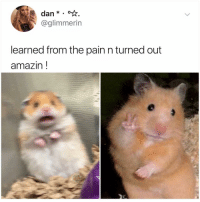 Memes, Amazin, and Hope: dan.  @glimmerin  learned from the pain n turned out  amazin! This gives me hope for 2019