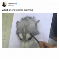 Funny, Dog, and Painting: Dan Hett  @danhett  What an incredible drawing GOTCHA! ITE A DOG NOT A PAINTING SILLY!