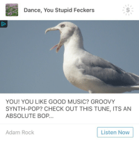 """Fucking, Music, and Pop: Dance, You Stupid Feckers  YOU! YOU LIKE GOOD MUSIC? GROOVY  SYNTH-POP? CHECK OUT THIS TUNE, ITS AN  ABSOLUTE BOP..  Adam Rock  Listen Now <p><a href=""""http://superpunkjellyfish.tumblr.com/post/169732092420/please-let-us-reblog-ads-i-am-in-fucking-tears"""" class=""""tumblr_blog"""">superpunkjellyfish</a>:</p><blockquote><p>PLEASE LET US REBLOG ADS I AM IN FUCKING TEARS HERE</p></blockquote>"""