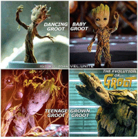 Which Groot is your favorite!? 👏🏻 --- Credit: @dc.marvel.unite: DANCING BABY  GROOT GROOT  IG I ODC. VEL UNI  TEENAGE GROWN  GROOT GROOT  THE EVOLUTION  OF Which Groot is your favorite!? 👏🏻 --- Credit: @dc.marvel.unite