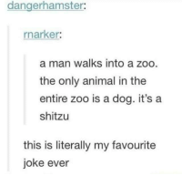 Animal, Humans of Tumblr, and Zoo: dangerhamster:  rnarker:  a man walks into a zoo  the only animal in the  entire zoo is a dog. it's a  shitzu  this is literally my favourite  joke ever