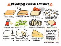 Fire, Memes, and Smoking: DANGEROUS CHEESE ADVISORY  A SHARP CHEDDAR  EXTRA SHARP CHEDDAR SmoKED GRurtRE  COTTAGE CHEESE WITH  ON FIRE  PINEAPPLE AND TACKS  PEPPERSPRAY JACK RADIOACTIVE cvRDS  RAZOR WIRE WRAPPED PECORINO  GOUDA-FER NOTHIN  REPORT SUSPICIOUS  CHEESES TO THE  BUREAU of  I DAIRY & FIREARMS  I CHEESES APPROACH  i  Do NOT SHOULD BE  FETA WITH A kNIfE  CAMEMBERT THATS  NOT SURE BUT IT'S  cONSIDERED ARMED &  DELICIOUS  FULL OF SPIDERS  VIBRATING  GEMMA CORRELL 2016 The 2017 The Nib calendar is out! Here's my comic for Cheese Month (which is January FYI) Buy your copy here - https://www.topatoco.com/merchant.mvc?Screen=PROD&Store_Code=TO&Product_Code=NIB-OBSCURECAL&Category_Code=NIB