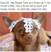 Yikes. dogsofcoachella literallythatsyou @chiathechihuahua: Dani,25. Ate Sweet Tarts and threw up in her  mouth a little. Has a loose fanny pack and  looser morals. Accidentally called her dad.  @barkbox  @chiathechihuahua Yikes. dogsofcoachella literallythatsyou @chiathechihuahua