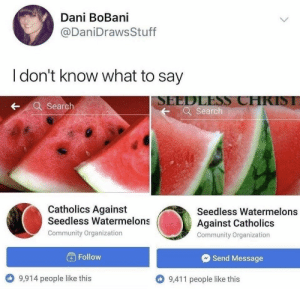 infinity war: Dani BoBani  @DaniDraws Stuff  I don't know what to say  SEEDLESS CHRIST  Q Search  -Search  Catholics Against  Seedless Watermelons  Seedless Watermelons  Against Catholics  Community Organization  Community Organization  Follow  Send Message  9,411 people like this  9,914 people like this infinity war