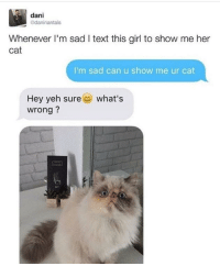 "Girl, Http, and Text: dani  daninantais  Whenever I'm sad I text this girl to show me her  cat  I'm sad can u show me ur cat  what's  Hey yeh sure  wrong? <p>Wholesome cat :) via /r/wholesomememes <a href=""http://ift.tt/2kt3u1k"">http://ift.tt/2kt3u1k</a></p>"