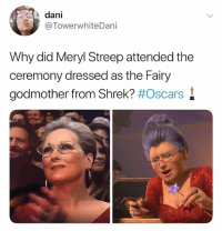 I can't believe some of you don't follow @funny 😂: dani  @TowerwhiteDani  Why did Meryl Streep attended the  ceremony dressed as the Fairy  godmother from Shrek? I can't believe some of you don't follow @funny 😂
