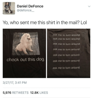 Lol, Yo, and Mail: Daniel DeFonce  @defonce  Yo, who sent me this shirt in the mail? Lol  ask me to turn around  ask me to turn around  ask me to turn around  ask me to turn around  ask me to turn around  ask me to turn around  check out this dog  ask me to turn around  3/27/17, 3:41 PM  5,976 RETWEETS 12.8K LIKES