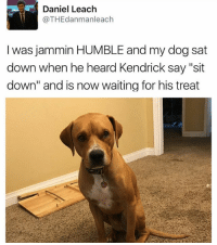 "Cute, Funny, and Humble: Daniel Leach  @THEdanman leach  I was jammin HUMBLE nd my dog sat  down when he heard Kendrick say ""sit  down"" and is now waiting for his treat Das cute as hell"
