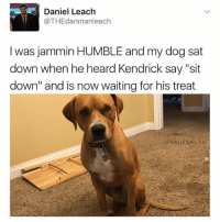 "Memes, Good, and Humble: Daniel Leach  @THEdanmanl each  I was jammin HUMBLE and my dog sat  down when he heard Kendrick say ""sit  down"" and is now waiting for his treat  CAKALESALAD Such a good boy tho"