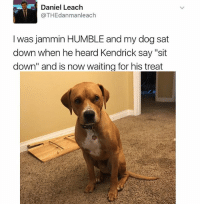 "Humble, Girl Memes, and Jammin: Daniel Leach  @THEdanmanleach  I was jammin HUMBLE and my dog sat  down when he heard Kendrick say ""sit  down"" and is now waiting for his treat Give him his treat!!!!!! (Trying this with my dog as we speak, will update on results)"