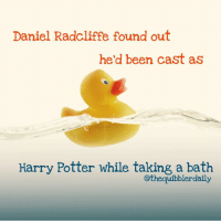 Daniel Radcliffe, Gryffindor, and Hermione: Daniel Radcliffe found out  he'd been cast as  Harry Potter while taking a bath  othequibblerdaily Do you prefer baths or showers? . Showers 🚿 . . . . . . __________________________________________________ __________________________________________________ hogwartsishome harrypotter potter potterhead wizardingworld wizardingworldofharrypotter gryffindor hufflepuff slytherin ravenclaw hogwarts hogwartsismyhome hermione sharethemagic hermionegranger ronweasley lordvoldemort voldemort harrypotterfacts hpfacts snape dracomalfoy nevillelongbottom hp jkrowling fandom emmawatson fantasticbeasts fbawtft
