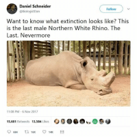 This is so sad 😢: Daniel Schneider  @BiologistDan  Follow  Want to know what extinction looks like? This  is the last male Northern White Rhino. The  Last. Nevermore  11:08 PM-6 Nov 2017  ㅇ猕  b(DS  15,681 Retweets 13,584 Likes This is so sad 😢