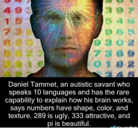 Beautiful, Brains, and Memes: Daniel Tammet, an autistic savant who  speaks 10 languages and has the rare  capability to explain how his brain works,  says numbers have shape, color, and  texture. 289 is ugly, 333 attractive, and  pi is beautiful.