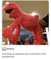 """Elmo, Memes, and Shit: danipup  i'm losing my absolute shit at the Elmo in the  background <p>His eyes say it all via /r/memes <a href=""""https://ift.tt/2yyIUDU"""">https://ift.tt/2yyIUDU</a></p>"""