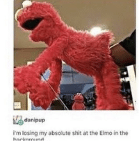 Elmo, Shit, and Losing: danipup  i'm losing my absolute shit at the Elmo in the