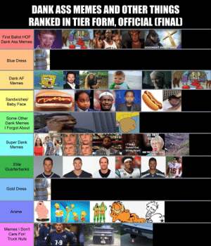Found on Twitter, can't say anything is wrong: DANK ASS MEMES AND OTHER THINGS  RANKED IN TIER FORM, OFFICIAL (FINAL)  First Ballot HOF  Dank Ass Memes  GOODNIGHT SWEET PRINCE  Blue Dress  Dank AF  FILE  Memes  Sandwiches/  Baby Face  Some Other  Dank Memes  I Forgot About  D  ALL THESE  FLAVORS  34+10  (12+12)  Super Dank  Memes  I Think  Farted Out  Of My Heart  AND YOU CHOOSE TO BE  SALTY  if x=ythen  Elite  15  Quarterbacks  Gold Dress  Anime  Memes I Don't  Care For/  Truck Nuts  VENFL MEMES  7-9 Found on Twitter, can't say anything is wrong
