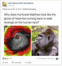 You could say that my page is dead / irrelevant, but I'll never stoop to this level.: Dank Memes Melt Steel Beams  3 hrs  E  Follow us on SC  & IG dankmemesgang  Why does Hurricane Matthew look like the  ghost of Harambe coming back to seek  revenge on the human race?  737 Comments 2k Shares  Like Comment  Share You could say that my page is dead / irrelevant, but I'll never stoop to this level.