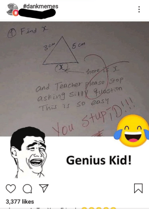 How is this a dank meme?:  #dankmemes  O Find X  5 cm  3CM  here i  and Teacher please Stop  asking sily quastion  This is so easy  You Stup7D!!  Genius Kid!  3,377 likes  ... How is this a dank meme?