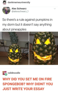 Skirting the rules like a boss: dankmemeuniversity  Alex Schwarz  @alexschwarz_1  So there's a rule against pumpkins in  my dorm but it doesn't say anything  about pineapples  validnoodle  WHY DID YOU SET ME ON FIRE  SPONGEBOB? WHY DIDNT YOU  JUST WRITE YOUR ESSAY Skirting the rules like a boss