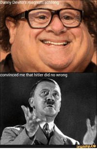 Danny Devito: Danny Devito's magnum Schlong  convinced me that hitler did no Wrong  ifunny.CO