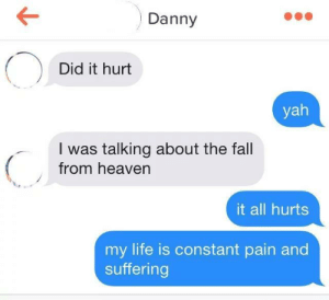 Dank, Fall, and Heaven: Danny  Did it hurt  yah  I was talking about the fall  from heaven  it all hurts  my life is constant pain and  suffering meirl by despisesunrise MORE MEMES