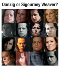 Danzig, Sigourney Weaver, and  Again: Danzig or Sigourney Weaver? And Bexar does it again.  Whoah.  #danzigmemes #danzigorsigourneyweaver #danzig #sigourneyweaver #chihuahuaormuffin