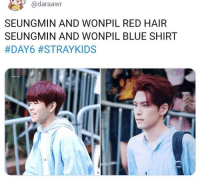 Blue, Hair, and Red: @daraawn  SEUNGMIN AND WONPIL RED HAIR  SEUNGMIN AND WONPIL BLUE SHIRT
