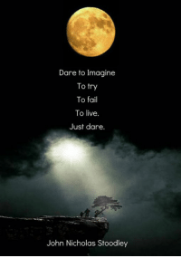 Dare to Imagine  To try  To fail  To live  Just dare.  John Nicholas Stoodley Just dare.