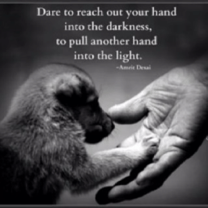 into the darkness: Dare to reach out your hand  into the darkness,  to pull another hand  into the light.  Amrit Desai