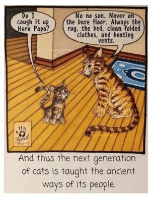 Cats, Clothes, and Ancient: DAREDOURLE  EDARE  Do I  cough it up  Here Papa?  No no son. Never on  the bare floor. Always the  rug, the bed, clean folded  clothes, and heating  vents.  DAREDOUBLEDARE  DAREDOUBLEDARE  of 21-19  And thus the next generation  of cats is taught the ancient  ways of its people.
