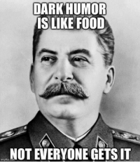 DARK HUMOR  IS LIKE FOOD  NOT EVERYONE GETS IT  inngflip.com The gist of this page. Don't like it? Gtfo bitch. -Agandaur