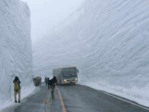 Mood, Target, and Tumblr: darkeshi:  podencos:  clifum:  What 60 feet of snow cleared in Japan looks like. this is it this is the end   Mood   now everything fits