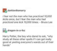 "Harry Potter, Bruce Lee, and Good: darklordtomarry  Ifear not the man who has practiced 10,000  kicks once, but I fear the man who had  practiced one kick 10,000 times. Bruce Lee  Re dragon-in-a-fez  Harry Potter, the boy who dared to ask, ""why  study all these other spells if I can get really  good at yeeting everyone's wands out of their  hands"" The chosen one"