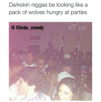 😭😭😭😭: Darkskin niggas be looking like a  pack of wolves hungry at parties  IG @insta comedy 😭😭😭😭