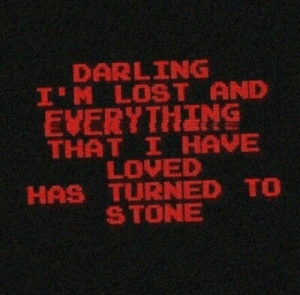 im lost: DARLING  I'M LOST AND  EVERYTHING  THAT I HAVE  LOVED  HAS TURNED TO  STONE