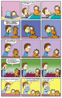 hehe his eyes look funny: DARN IT GARFIELD!  WHEN I SPEAK,  PAY ATTENTION!  trOU NEED TO  GO ON A DIET  So, GARFIELD,  DID YOU SA E ROOM  FOR DESSERT?  HEy GARFIELD WETRE GOING T-  GARFIELD GO BACK  TO BED  NO! NOT THIS YOU FUCKING CAT  I AM TIRED OF  YOUR SHIT hehe his eyes look funny