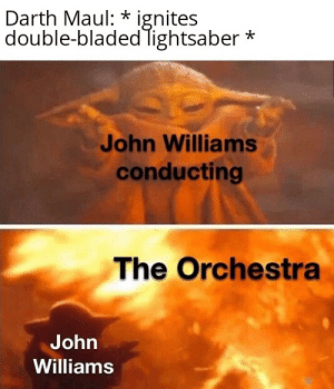 * Duel of the Fates intensifies *: Darth Maul: * ignites  double-bladed Tightsaber  John Williams  conducting  The Orchestra  John  Williams * Duel of the Fates intensifies *
