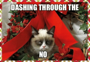 What's your favorite Christmas song? - Ars Technica OpenForum: DASHING THROUGH THE  NO What's your favorite Christmas song? - Ars Technica OpenForum
