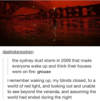 Fire, Memes, and World: dashokeypokey:  the sydney dust storm in 2009 that made  everyone wake up and think their houses  were on fire: grouse  i remember waking up, my blinds closed, to a  world of red light, and looking out and unable  to see beyond the veranda, and assuming the  world had ended during the night can this happen but like for real - Max textpost textposts