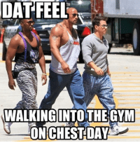 Dat Feel: DAT FEEL  WALKING INTO THE GYM  ON CHEST DAY