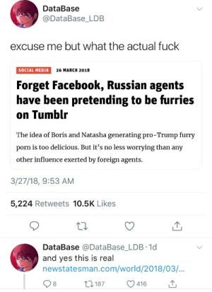Facebook, Social Media, and Tumblr: DataBase  @DataBase LDB  excuse me but what the actual fuck  SOCIAL MEDIA 26 MARCH 2018  Forget Facebook, Russian agents  have been pretending to be furries  on Tumblr  The idea of Boris and Natasha generating pro-Trump furry  porn is too delicious. But it's no less worrying than any  other influence exerted by foreign agents.  3/27/18, 9:53 AM  5,224 Retweets 10.5K Likes  DataBase @DataBase_LDB 1d  and yes this is real  newstatesman.com/world/2018/03/  8  ,187  416 Pwease kill me
