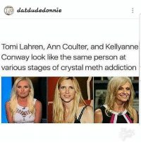 Conway, Memes, and 🤖: datdudedonnie  Tomi Lahren, Ann Coulter, and Kellyanne  Conway look like the same person at  various stages of crystal meth addiction 😭😭😭😧 💀💀💀