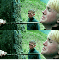 Memes, Date, and 🤖: - Date: 15-07-17 --- Look at this beauty. Comment what you think Malfoy was thinking at this point 😎 --- Q- what's your HP NOTP (least favourite HP ship)? --- HarryPotter ThePrisonerOfAzkaban