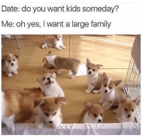 Family, Memes, and Butterfly: Date: do you want kids someday?  Me: oh yes, I want a large family Follow me @antisocialtv @lola_the_ladypug @x__social_butterfly__x @x__antisocial_butterfly__x