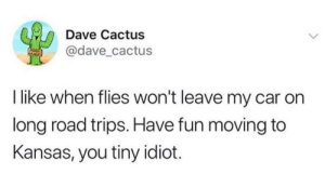 Idiot, MeIRL, and Fun: Dave Cactus  @dave_cactus  I like when flies won't leave my car on  long road trips. Have fun moving to  Kansas, you tiny idiot. meirl