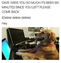 Animals, Ted, and Dank Memes: DAVE I MISS YOU SO MUCH ITS BEEN SIX  MINUTES SINCE YOU LEFT PLEASE  COME BACK  (Delete delete delete)  Hey  otro Don't follow @hilarious.ted if you don't like animals