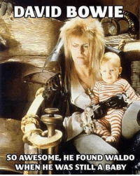 David Bowie, Awesome, and Baby: DAVID BOWIE  SO AWESOME, HE FOUND WALDO  WHEN HE WAS STILLA BABY <p>David Bowie Was The Man.</p>