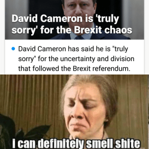 """David Cameron, Definitely, and Smell: David Cameron is 'truly  sorry' for the Brexit chaos  David Cameron has said he is """"truly  sorry"""" for the uncertainty and division  that followed the Brexit referendum  I can definitely smell shite Gonnae no dae that, Davey?"""